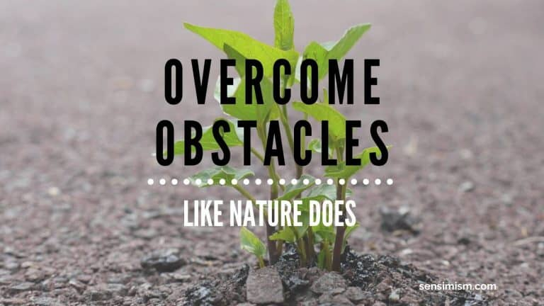 Overcome obstacles in your life: the nature's way – proven by Earth's history :)