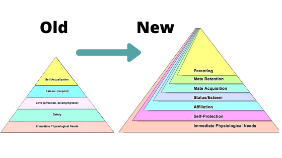 updated maslows pyramid of needs
